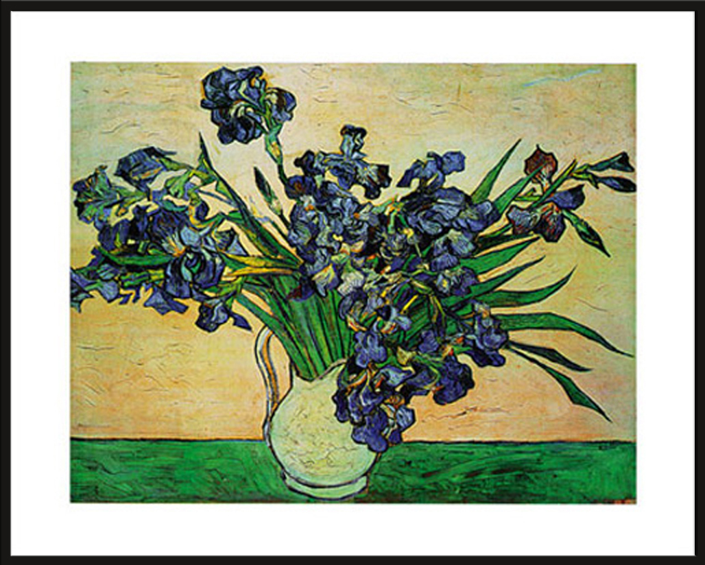 Grösse 50x40 Kunstdruck Artprint 1890 Iris Strauss Van Gogh Vincent