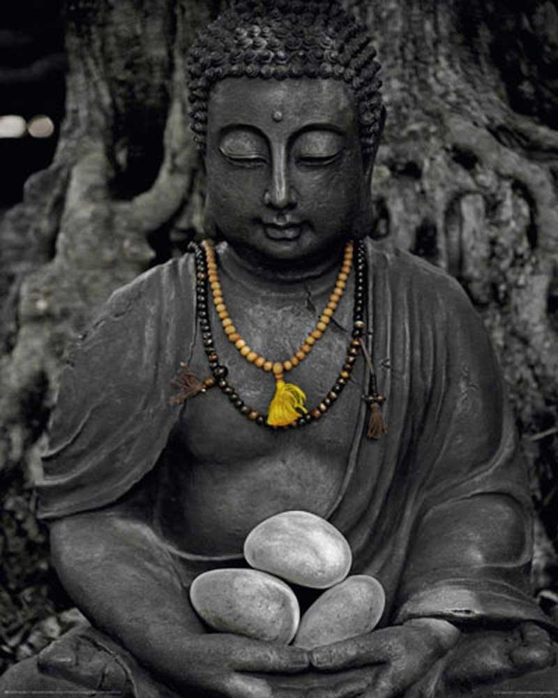 Buddha Stein Mini Poster 40x50