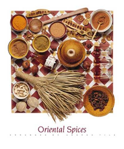 Andrea tilk kunstdruck art poster oriental spices