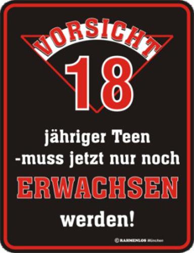Geburtstag Vorsicht 18 Blech Schild Spruch Fun Schilder 17x22