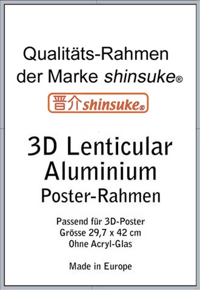 ALU Rahmen für A3-3D 30x42 cm - Profil: 25mm Aluminium silber ...