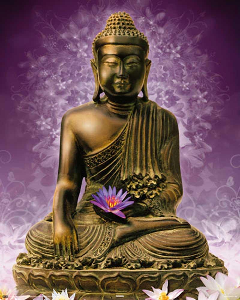 buddha violett mini poster 40x50. Black Bedroom Furniture Sets. Home Design Ideas
