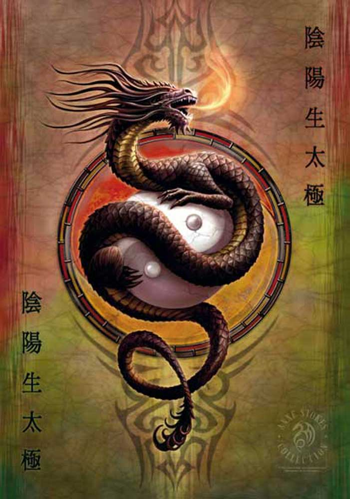 Anne Stokes  - Posterflagge - Yin Yang Protector