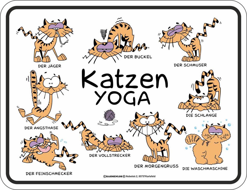katzen spr che yoga fun schilder 22x17. Black Bedroom Furniture Sets. Home Design Ideas