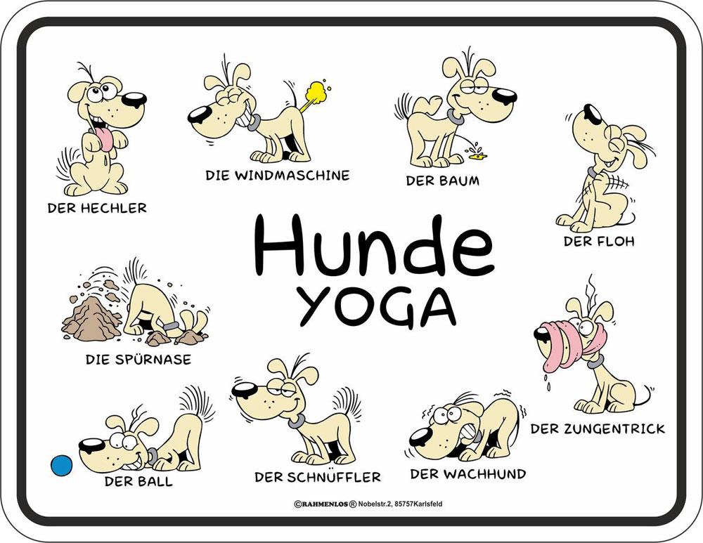Hunde Sprüche Yoga Fun Schilder 22x17