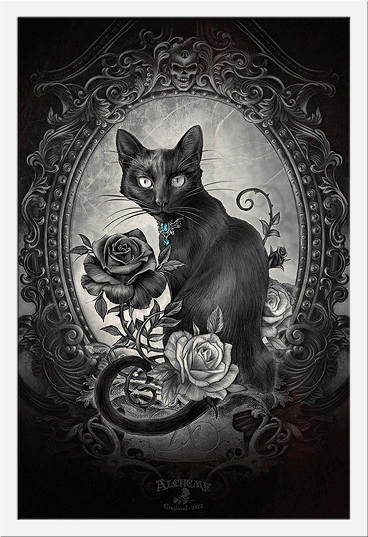 Größe 61x91,5 cm Poster Druck Paracelcus Alchemy