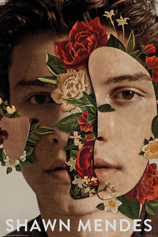 Shawn Mendes - Poster - Flowers