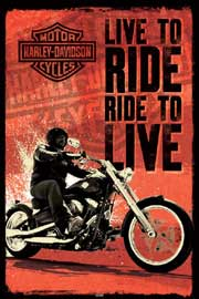 Poster - Harley Davidson Live To Ride