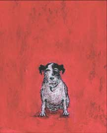 Poster - Toft, Sam Small Dog