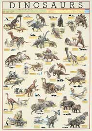 Poster - Educational - Bildung Dinosaurs Dinosaurier Version 6