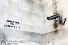 Poster - London Street Art - What are you looking at ?
