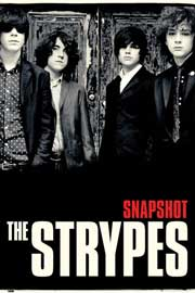 Poster - Strypes, The