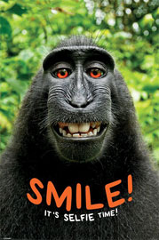 Poster - Monkey Smile! it's Selfie Time!