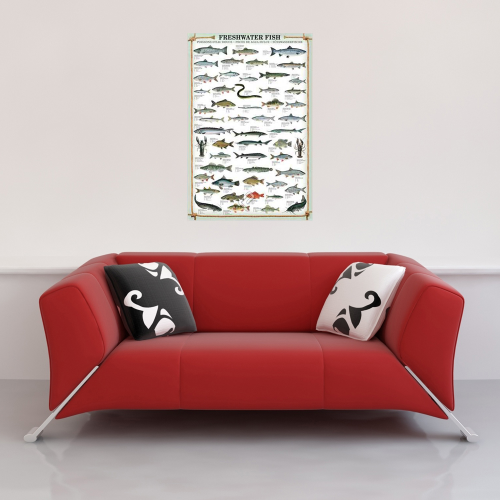 Educational - Poster - Freshwater Fish Vorschau Sofa