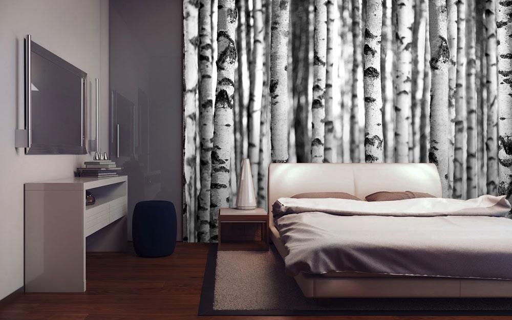 Forests birkenwald foto tapete foto tapeten 315x232 for Tapete birkenwald
