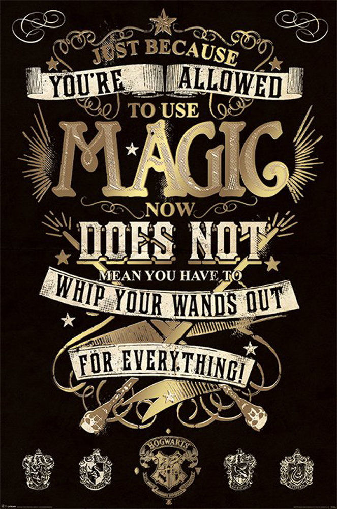 HARRY POTTER - Magic - Film Kino - Poster Druck - Größe 61x91,5 cm ...
