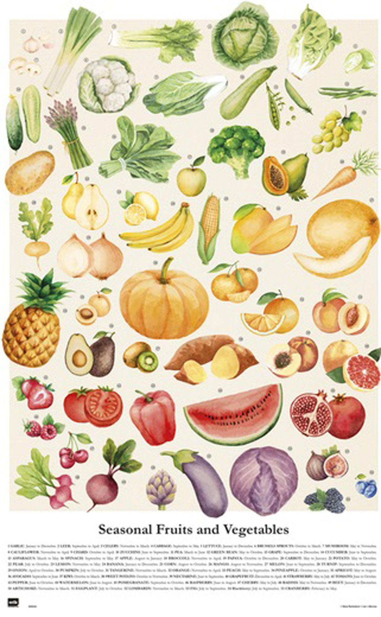 essen  obst und gemüse  poster  61x915