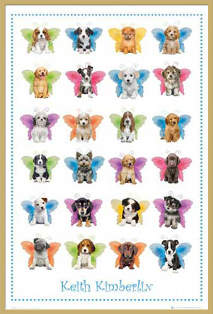 keith kimberlin dog wings hunde poster druck gr e. Black Bedroom Furniture Sets. Home Design Ideas