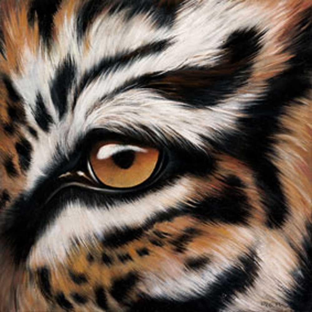 helm tigers eye repeat - 1000×1000