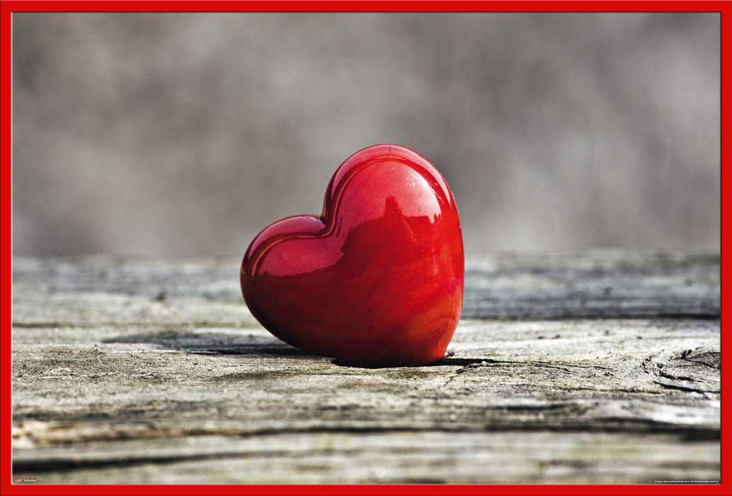 Bilder Herzen Liebe