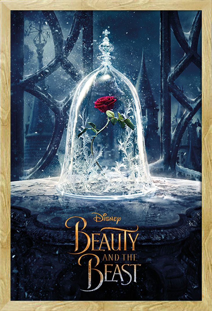 Schöne Und Das Biest Rose Kaufen