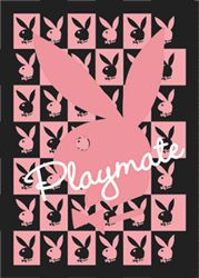Poster - Playboy Playmate Bunny 3D Poster