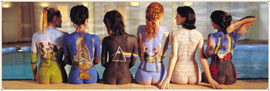 Poster - Pink Floyd Back Catalogue