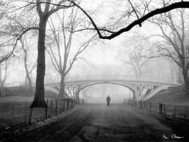 Poster - Silberman, Henri Gothic Bridge, Central Park