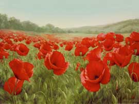 Levashov, Igor Field of Poppies