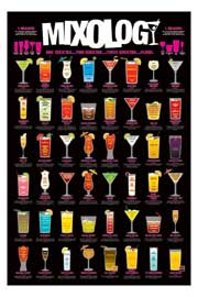 Poster - Fun Mixology