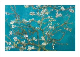 Poster - Van Gogh, Vincent Almond Blossom San Ramy 1890