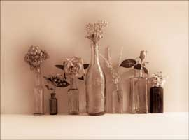 Winstanley, Ian Flower Collection