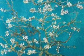 Poster - Van Gogh, Vincent Almond Blossom San Remy 1890