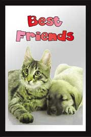 Poster - Cats Best Friends