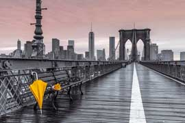 Poster - Frank, Assaf Brooklyn Bridge Umbrella