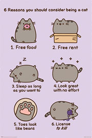Poster - Pusheen Reasons to be a Cat