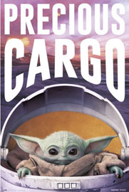 Star Wars The Mandalorian - Precious Cargo