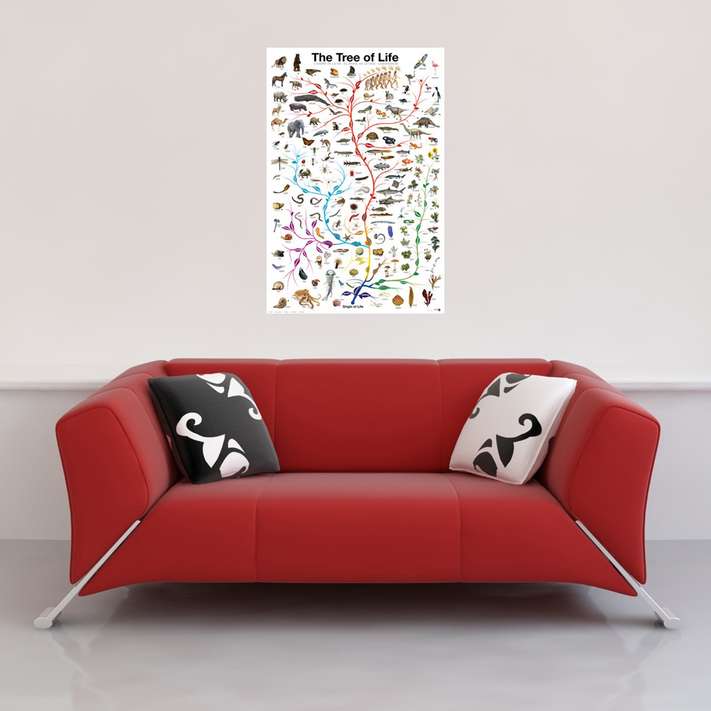 Educational - Bildung - Poster - Tree of Life Vorschau Sofa