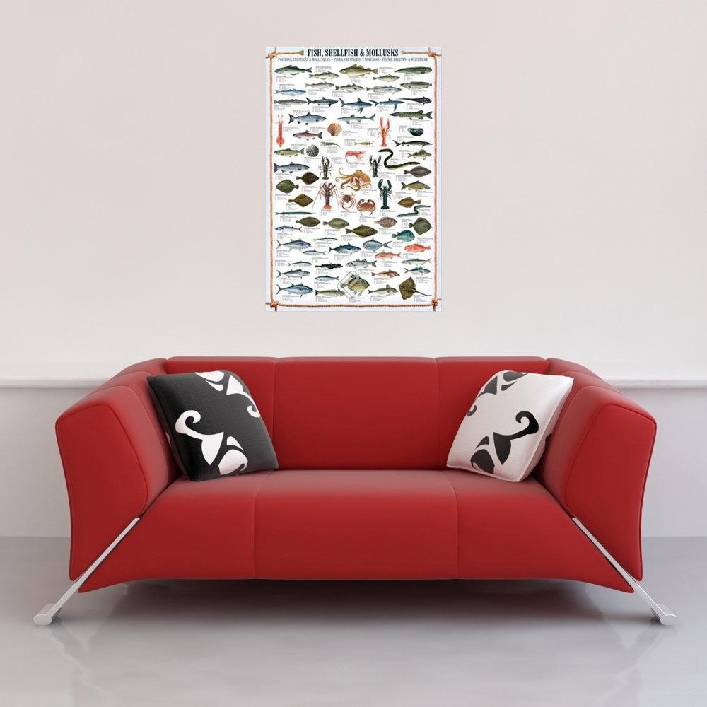 Educational - Bildung - Poster - Fish, Shellfish & Mollusks Vorschau Sofa
